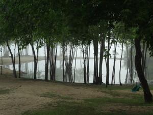 <b>Foggy by Dan Wilson</b>